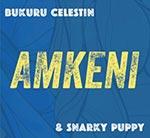 CD-amkeni